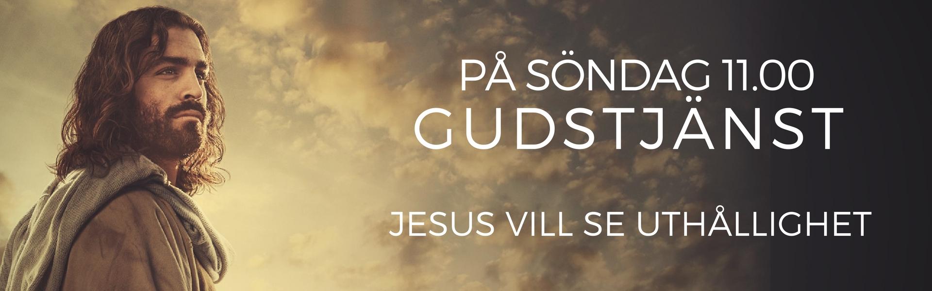 JESUS VILL SE